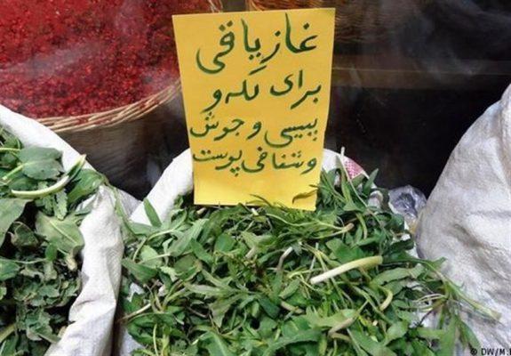گیاه درمانی پیسی