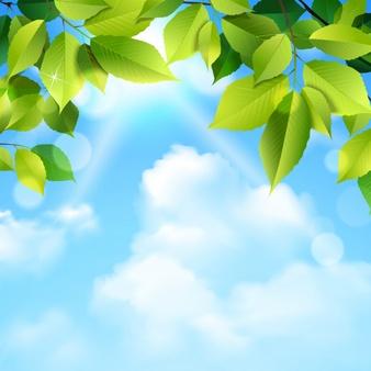 هوای پاکیزه